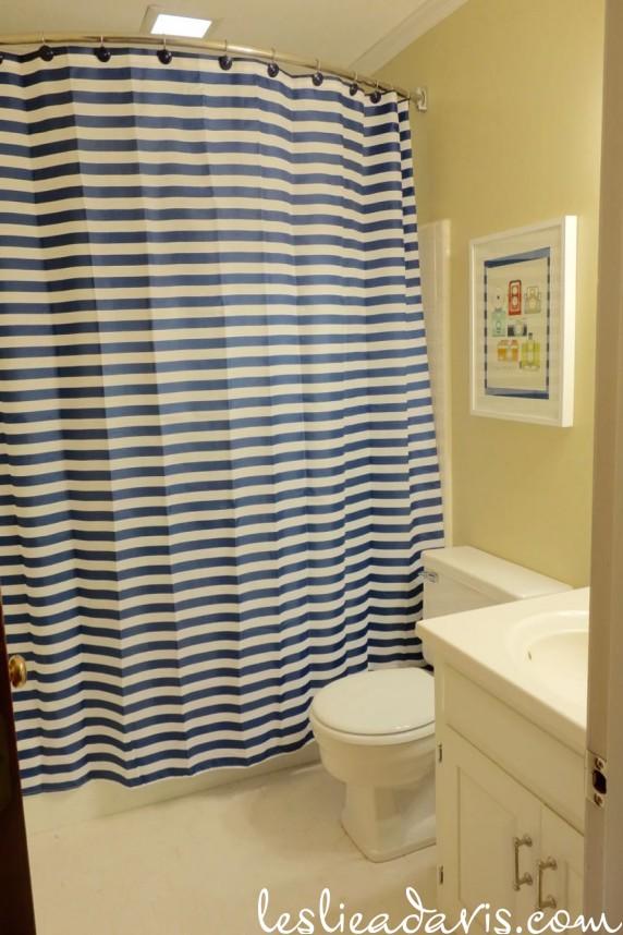Guest Bath 03.20